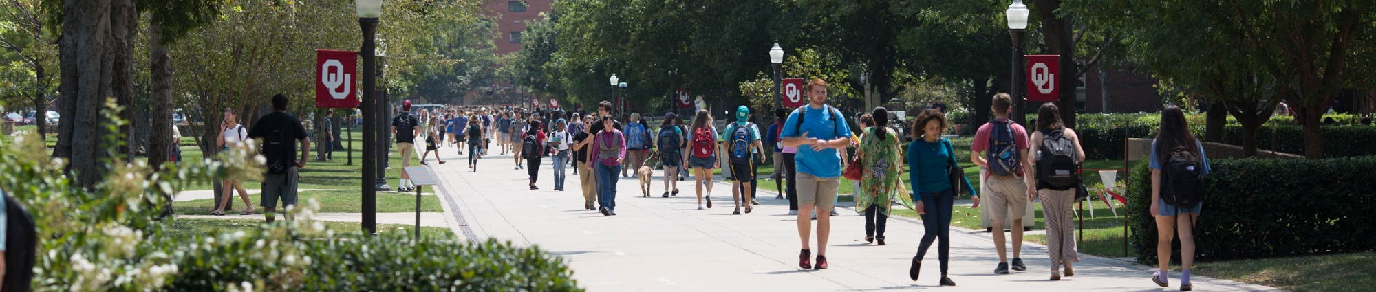 Students Walking in the South Oval