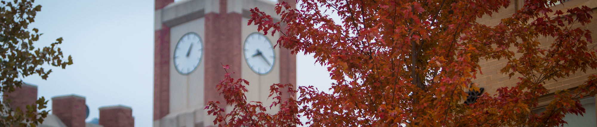 Bizzell clock tower with fall tree