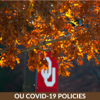 OU Flag hanging from a tree with orange leaves. OU COVID-19 Policies.