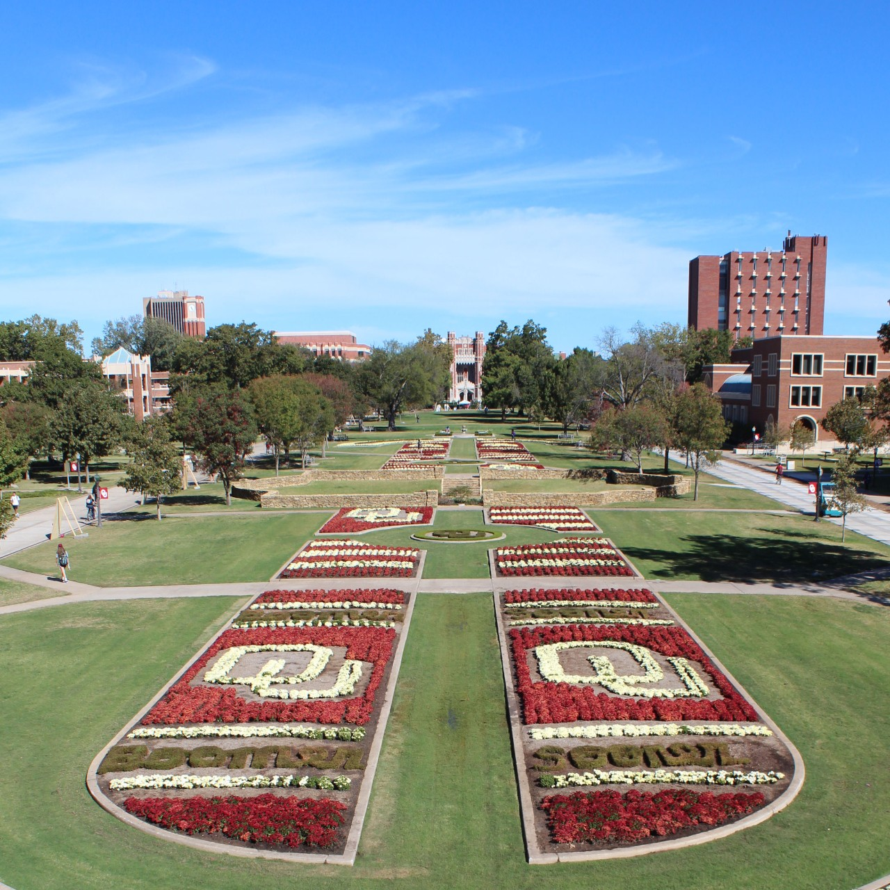 2014 South Oval Mums